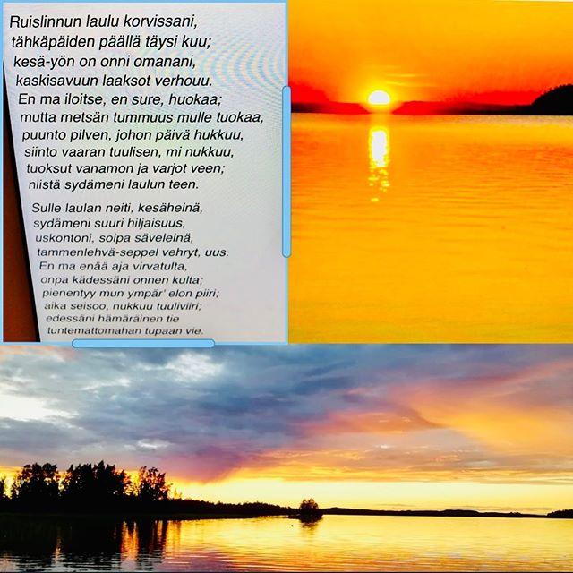 Eino Leino 6.7 1878 10.1 1926 Best known Finnish lyricist🇫🇮 #einoleino #poet #poetry #lyricist #einoleinoday #elegia #nocturne