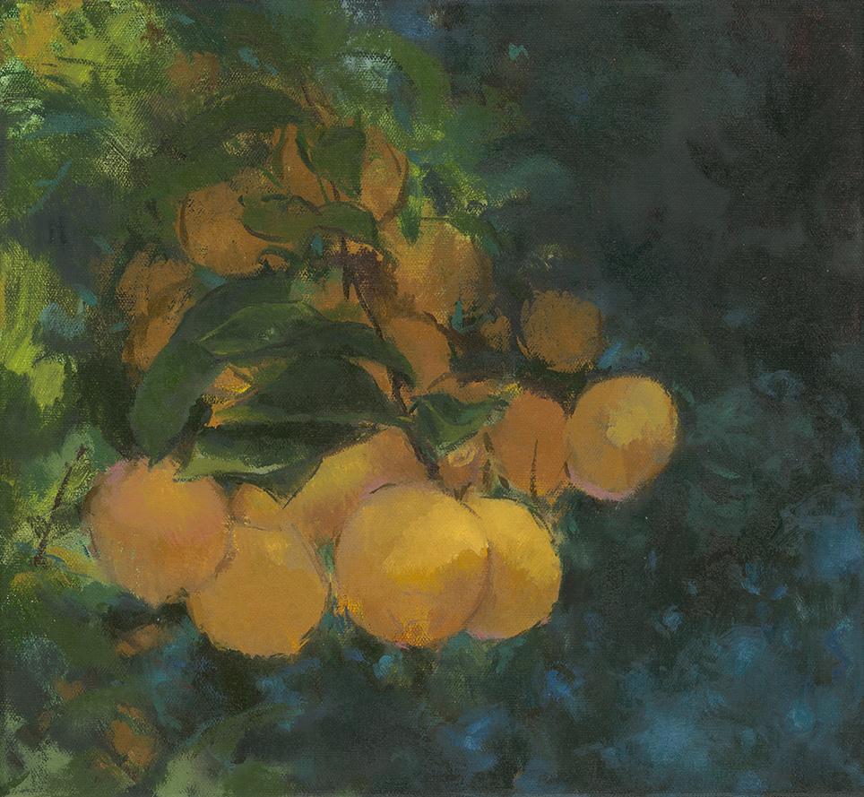 """lemon grove   oil on canvas  12x13""""  2015"""