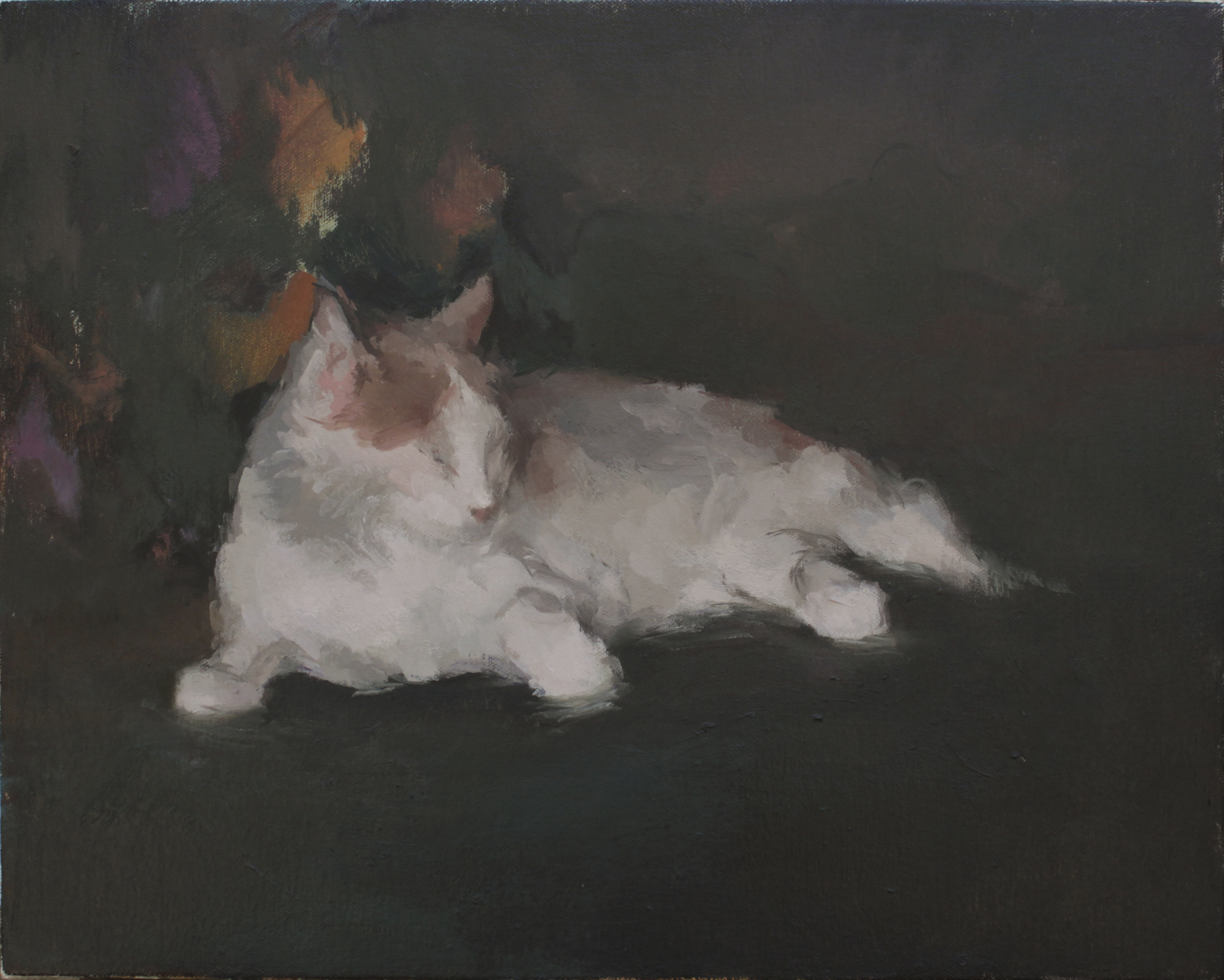 "Jack Bird's Cat  oil on canvas 14x18"" 2013  private collection Laguna Beach, CA"