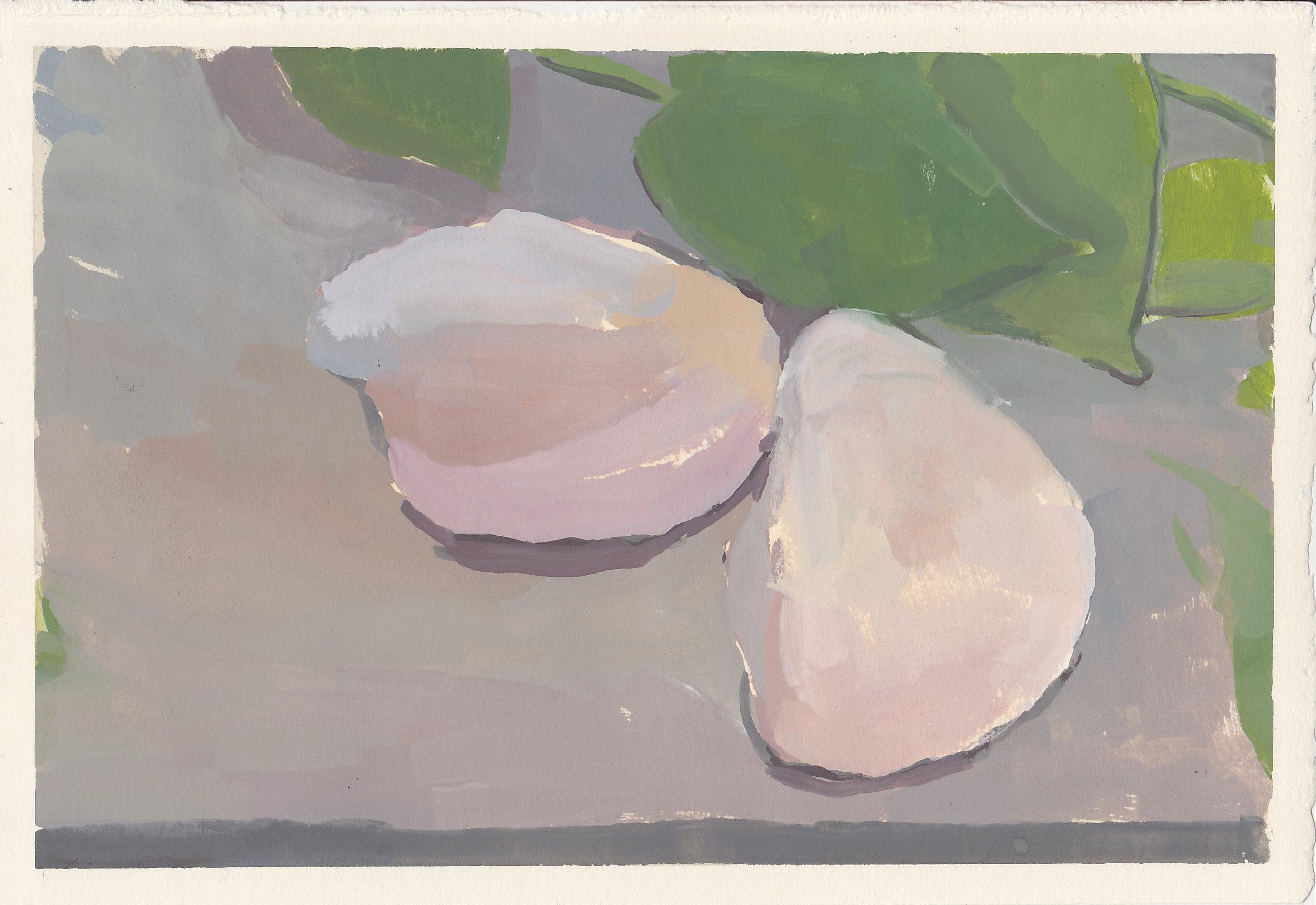 "shells & ivy   gouache on paper  6.75x10.25""  2017"