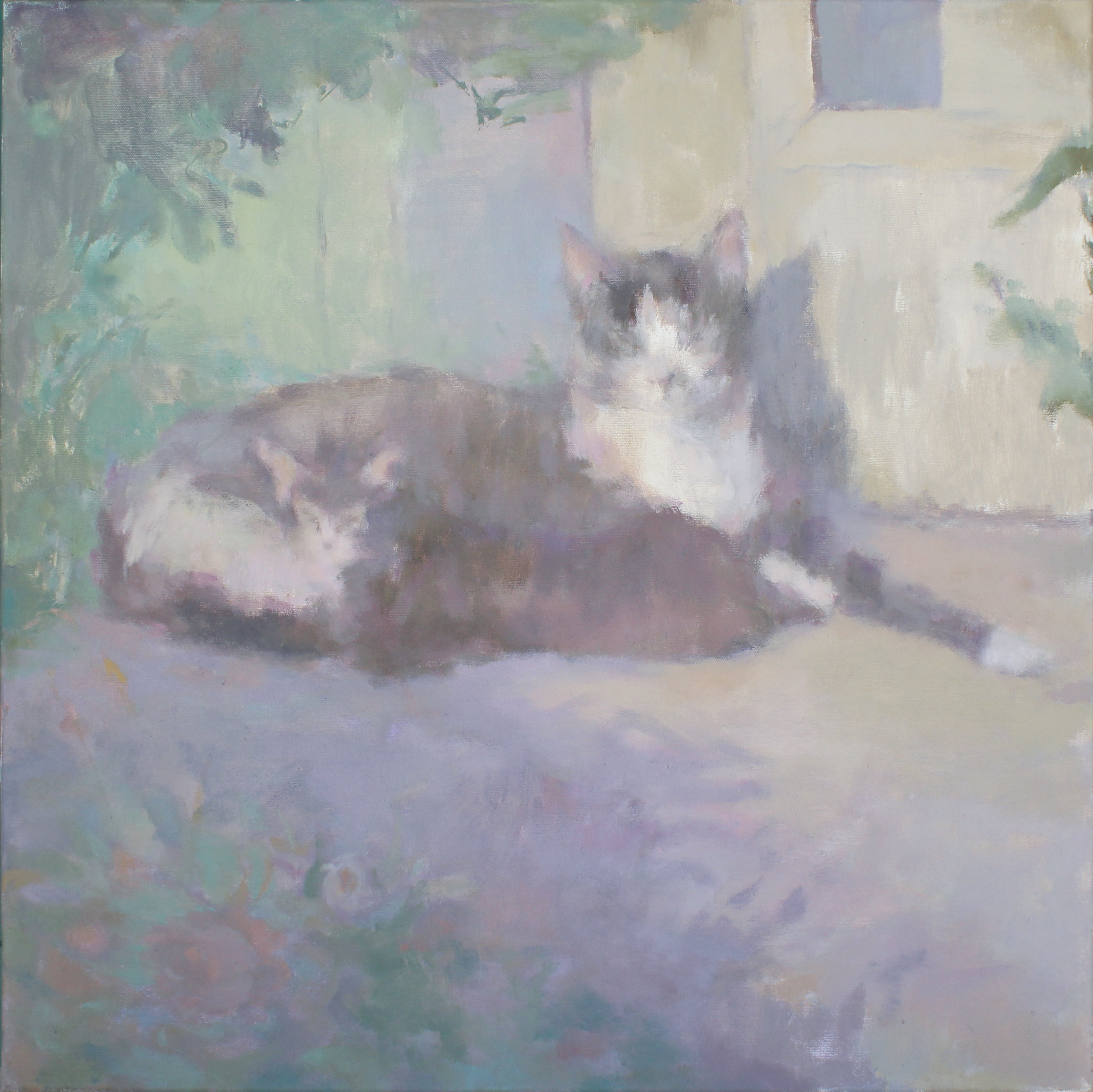 "Shadow Cats  oil on canvas 24 x 24"" 2019   purchase original"