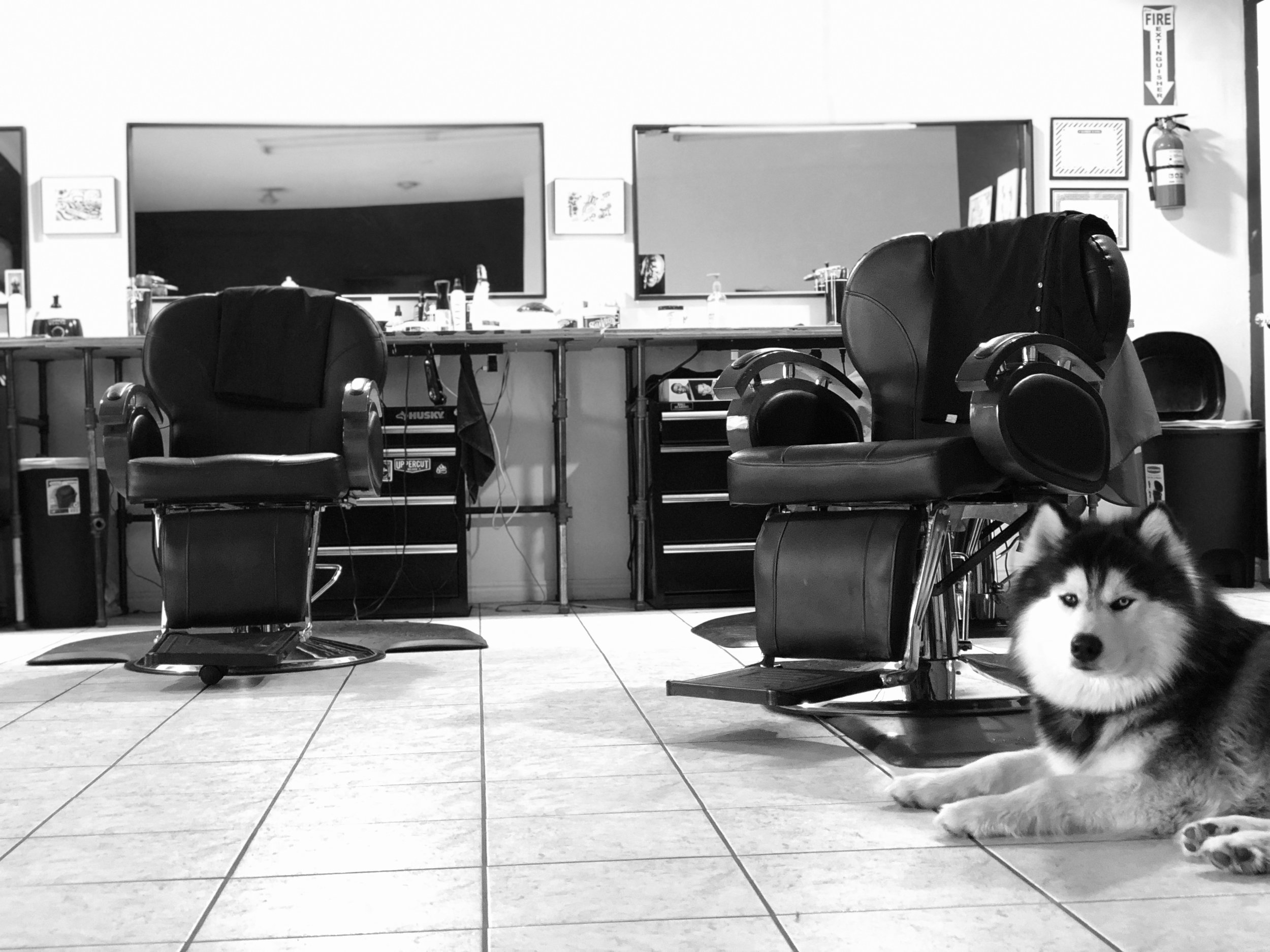 Barber Shop near me. - We are Salt lake city's barber shop with a great passion for what we do. We have no gimmicks, we keep things simple. So if you have been looking for a barber shop near you. And live in the Sandy, Murray and Cottonwood heights area. We are right around the corner from you and will give you an amazing haircut, people will ask where you got it from. Come find out why we are still Salt lake city's highest rated shop, and still remain Utah's hidden secret.We are an appointment only shop. If we have time in-between appointments we will take care of you. WE apologize but we are NO longer taking walk-ins.