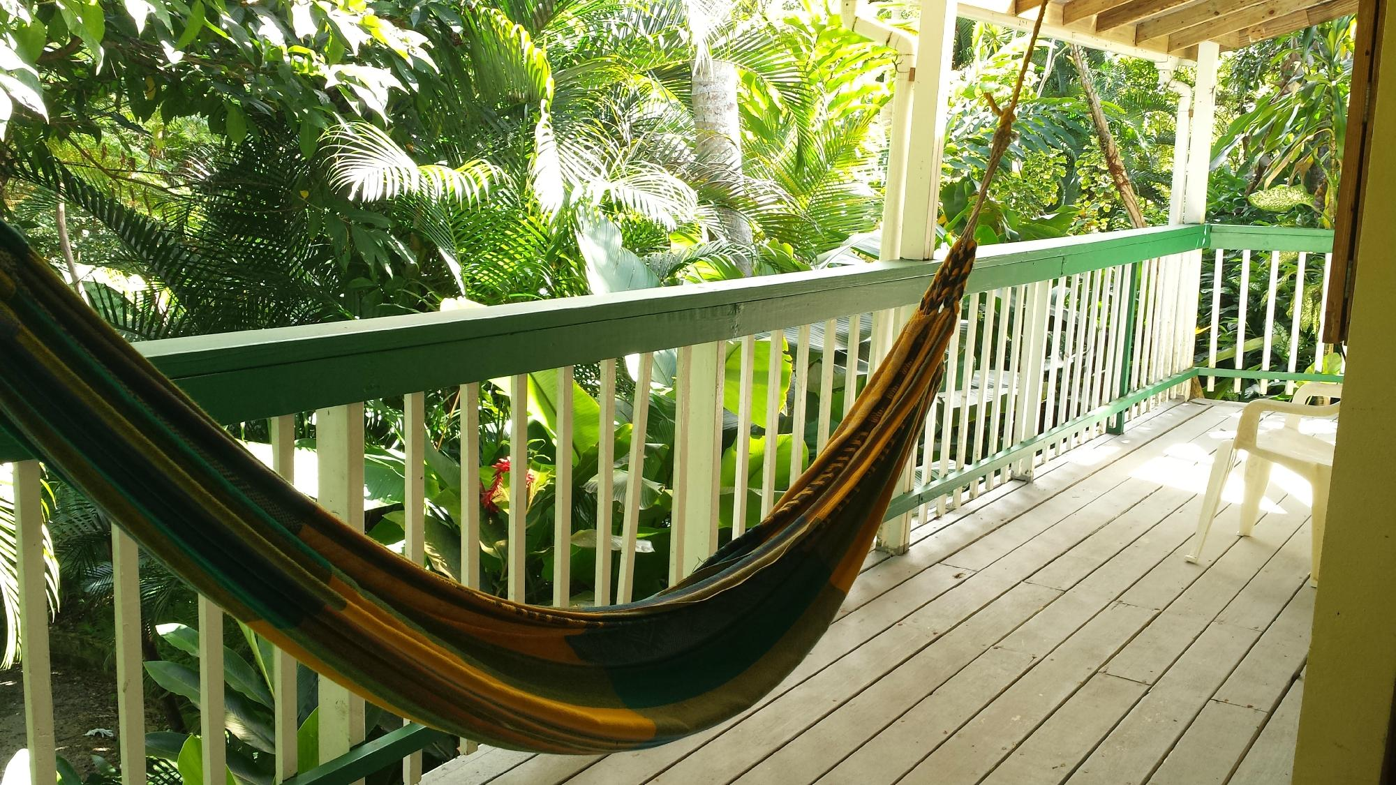 Relax to the sound of coqui's and lizard cuckoo's as you rock gently in one of Sue's porch-side hammocks.