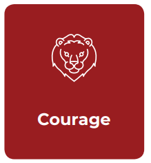 Courage IE values.png