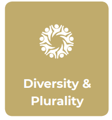 Diversity & Plurality IE values.png