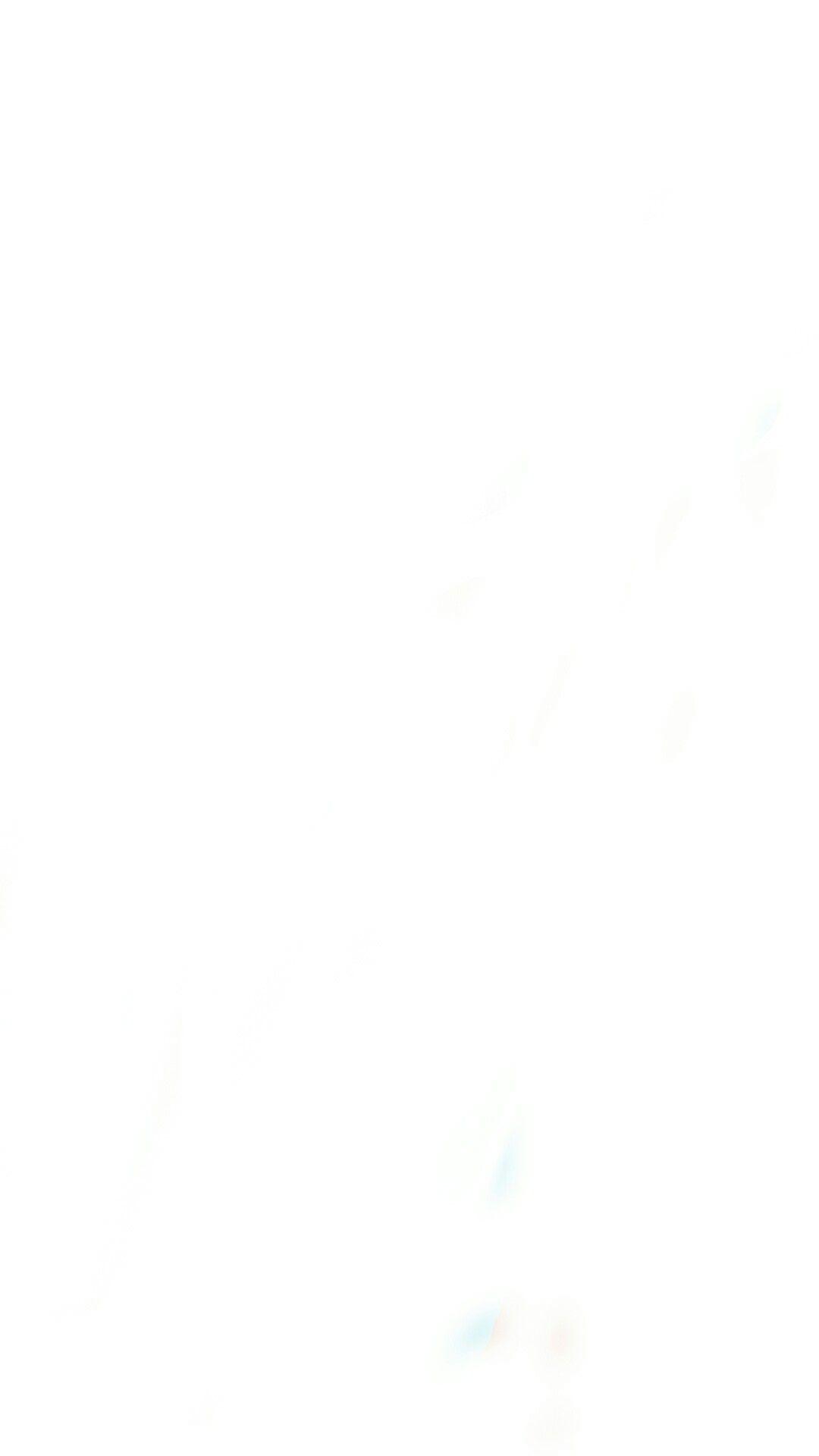 White divider.jpg