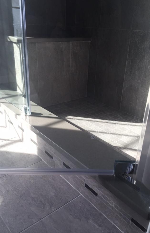Shower Step and Door