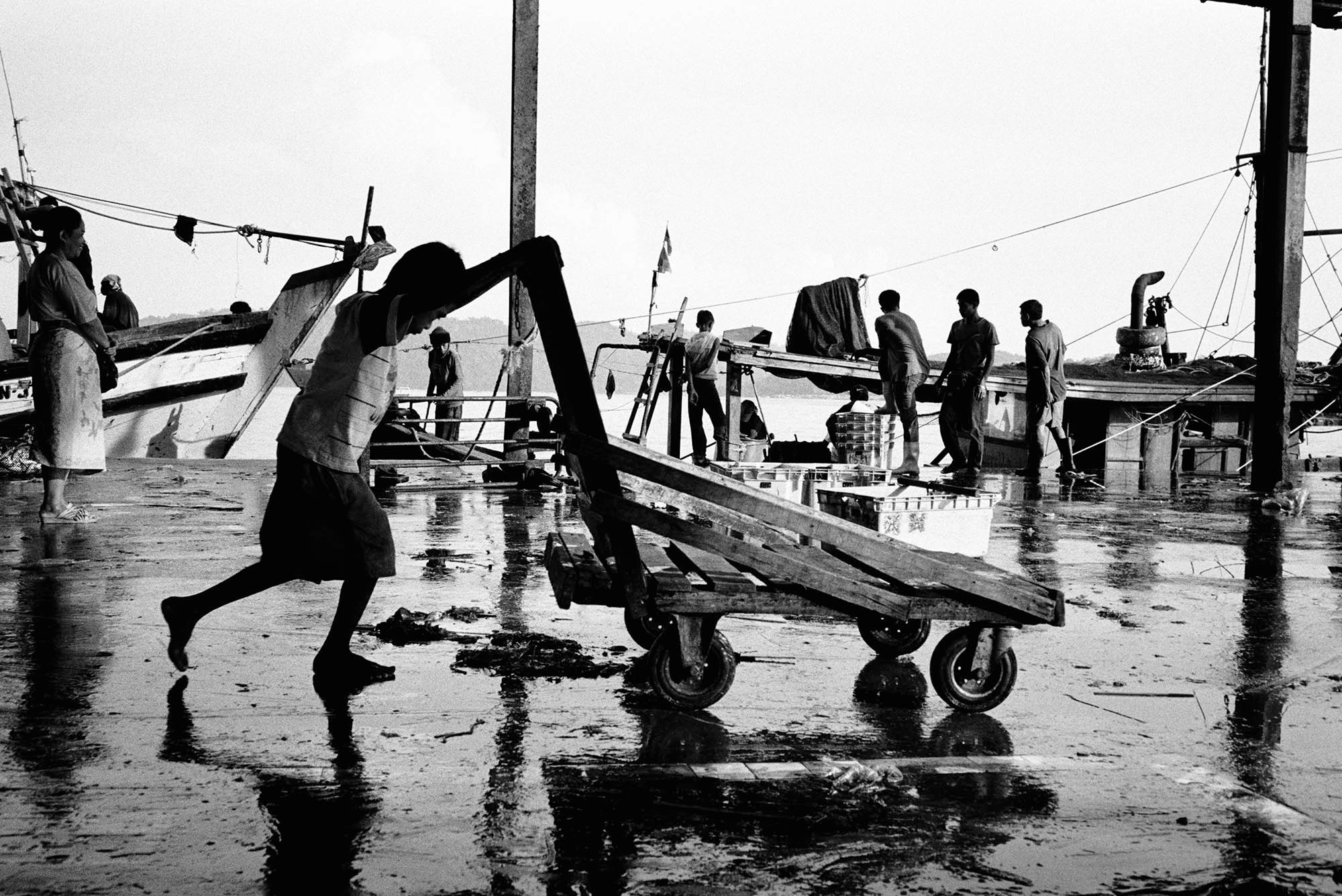 A young stateless boy pushes a cart at a fish market in Kota Kinabalu, Sabah, Malaysia. Up to 50,000 children, mostly of Filipino and Indonesian descent are stateless in Sabah.