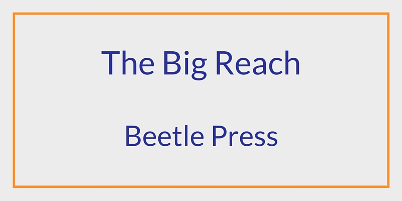 The Big Reach - Beetle Press - Amy Woolf