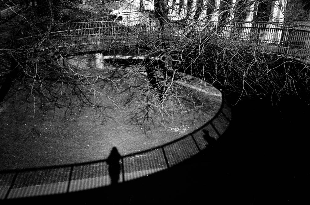 shadowportrait.jpg