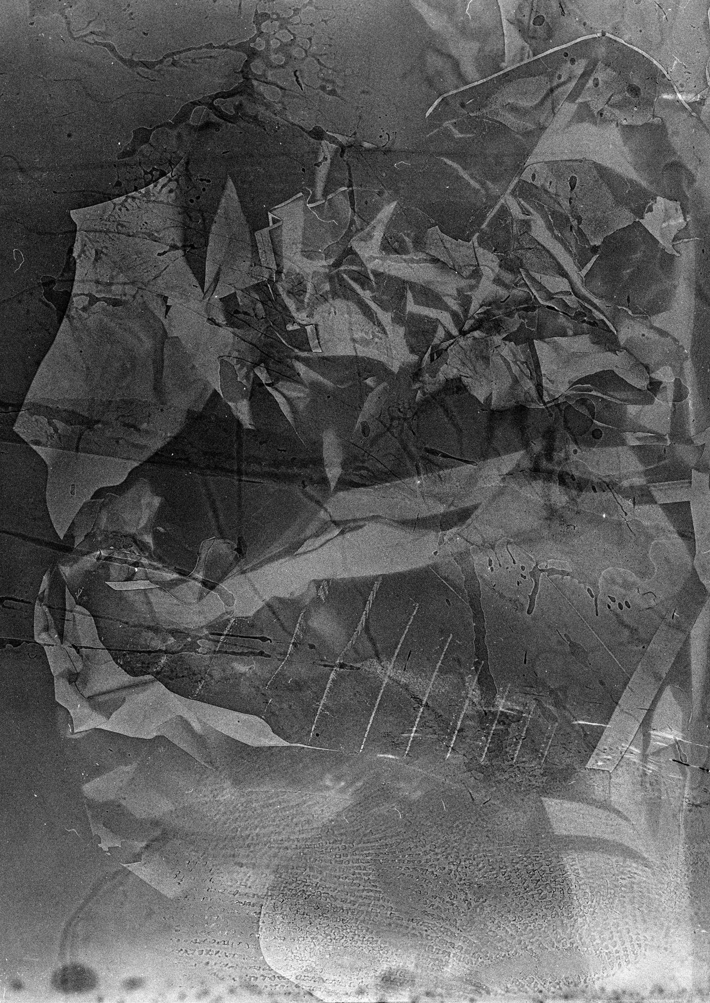 polarprintfinal_0004_Untitled-1_0006_Layer 3.jpg