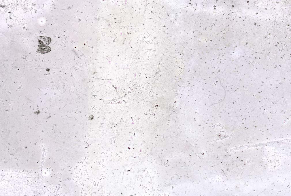 Unique 35mm transparency  24mm x 36mm