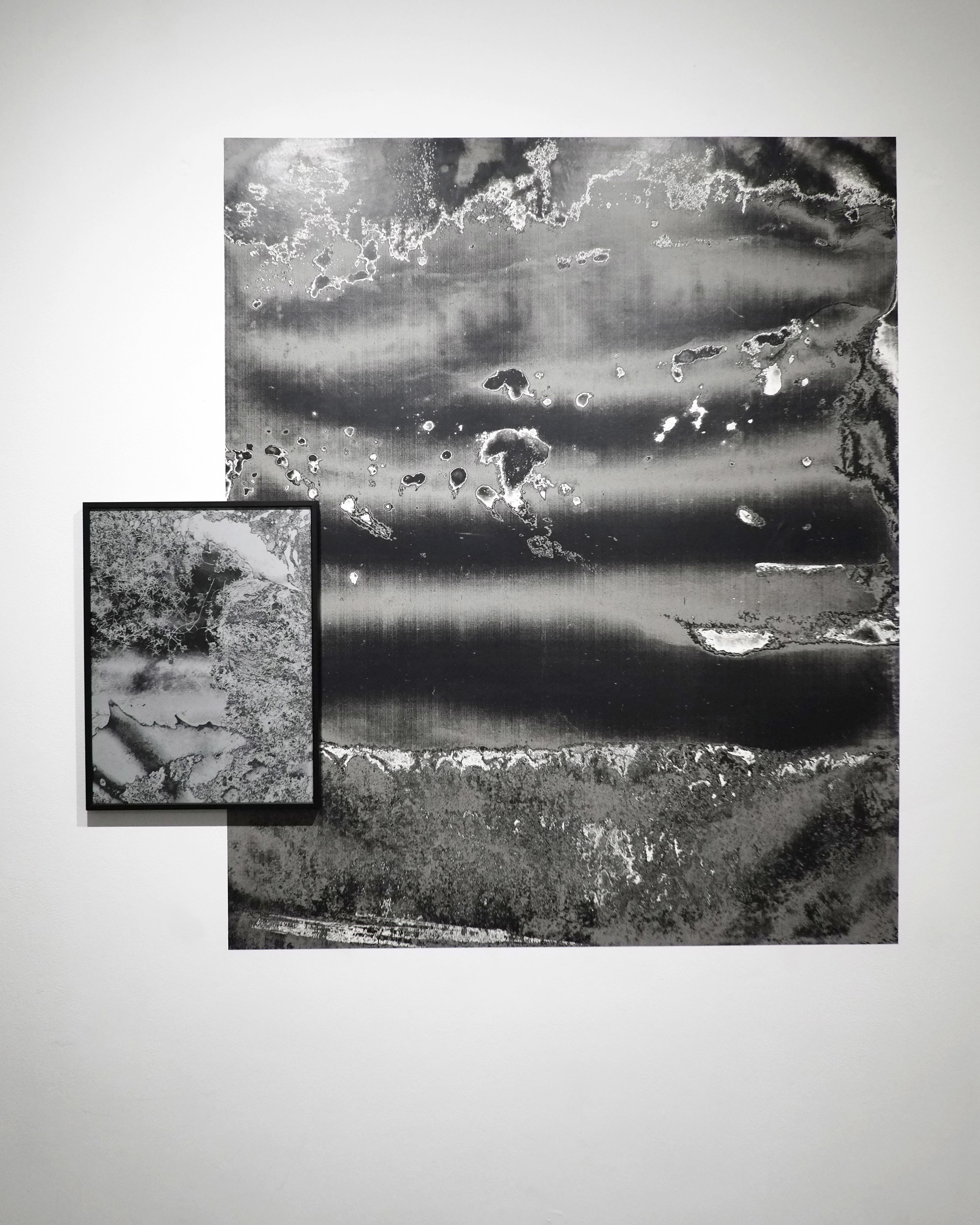 "12x16"" Archival Inkjet Print  33""x46"" Vinyl print  2018"