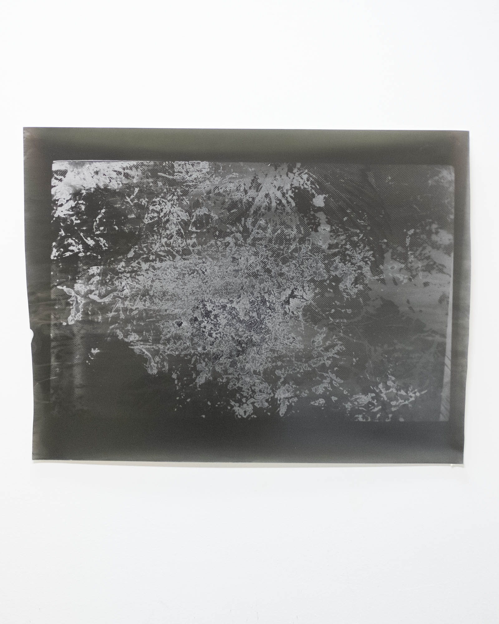 "Silver gelatin print  20""x30""  2018"