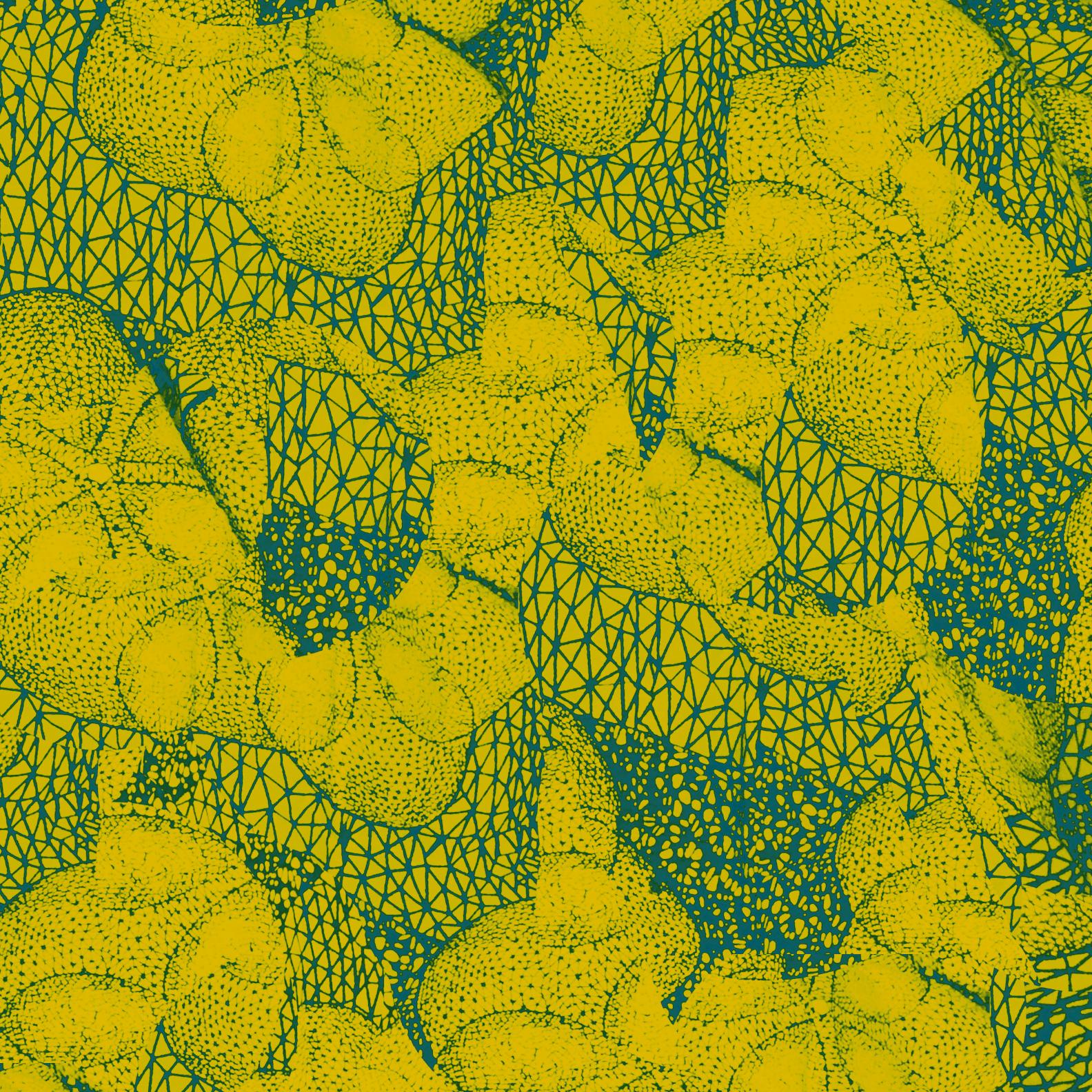 background yellow aliana grace bailey art design pattern print.jpg