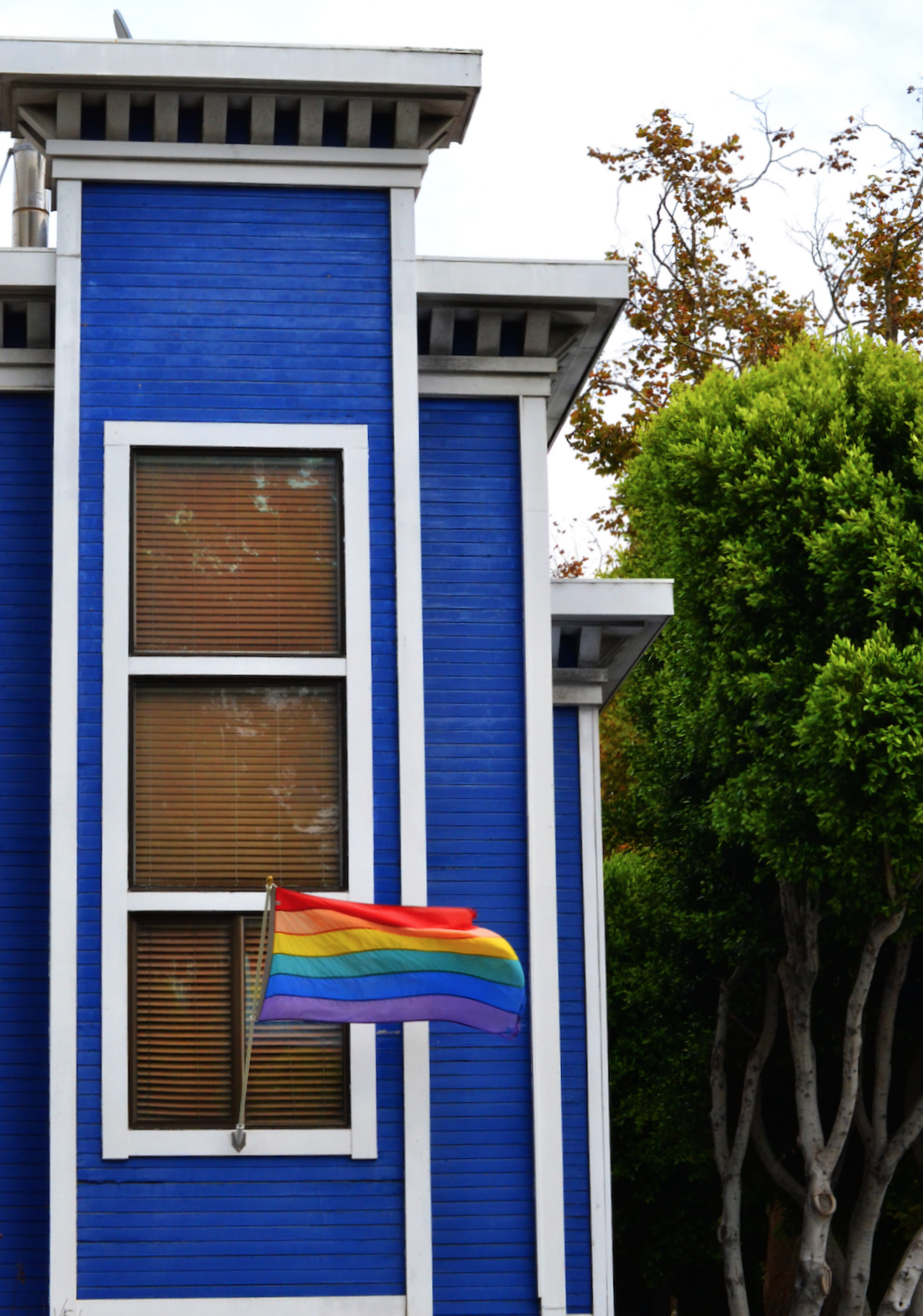Aliana Grace Bailey San Francisco California Love Wins Gay Pride.png