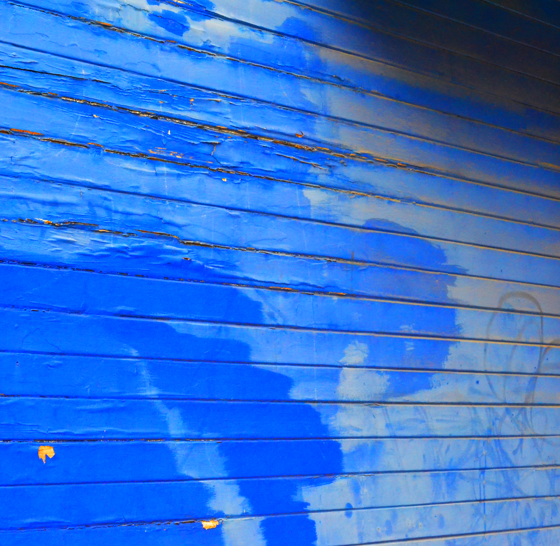 Aliana+Grace+Bailey+San+Francisco+California+Houses+Texture+Blue.png