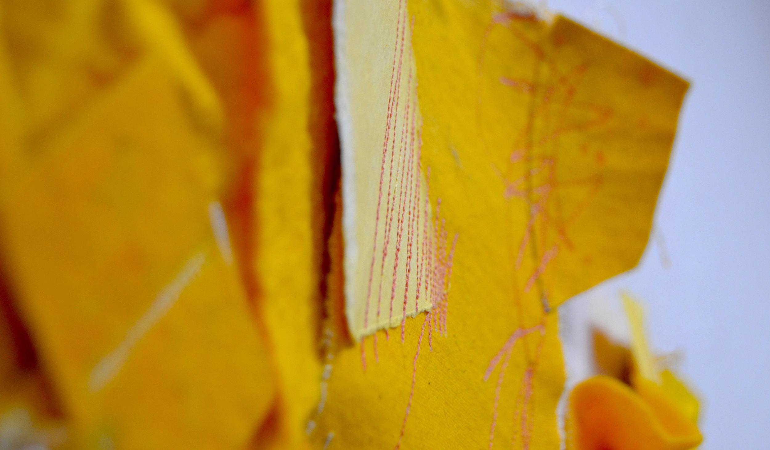 aliana grace bailey_yellow 23.jpeg