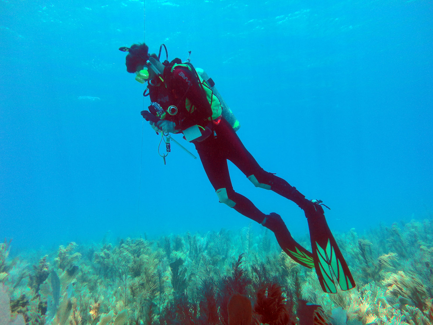 Dr Spooner at Saxonia Reef in Monte Cristi Bay