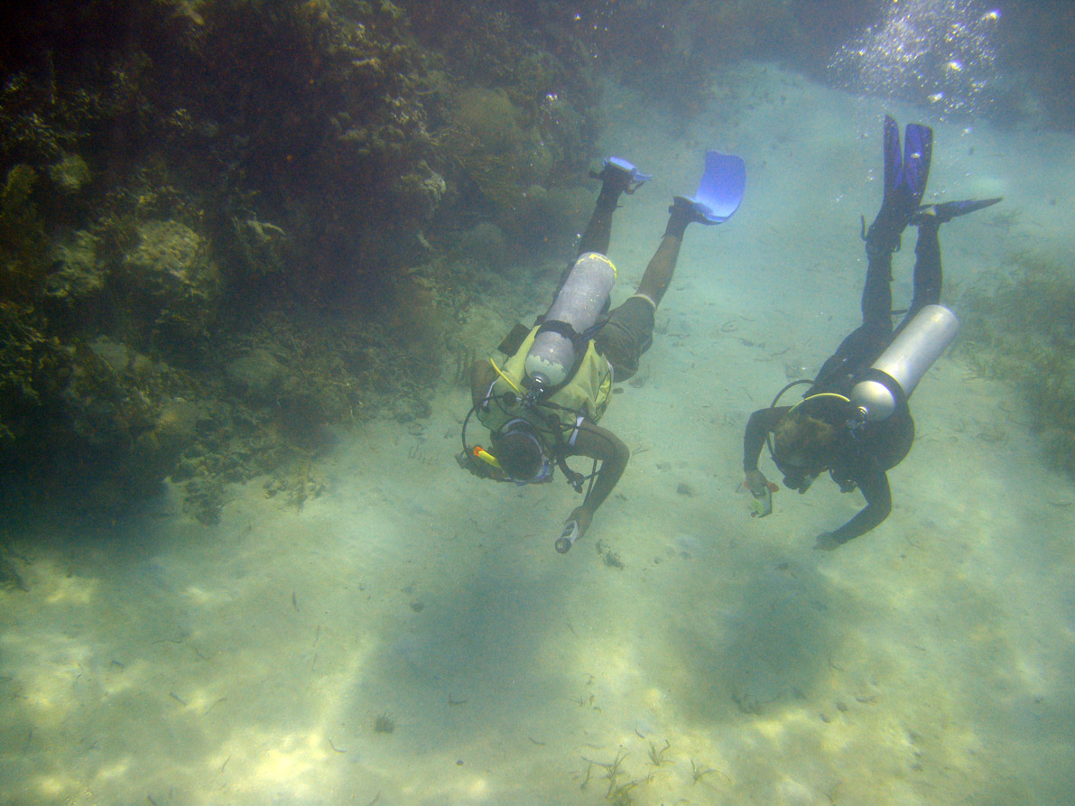 Diving through the cut between the reefs in Monte Cristi Bay