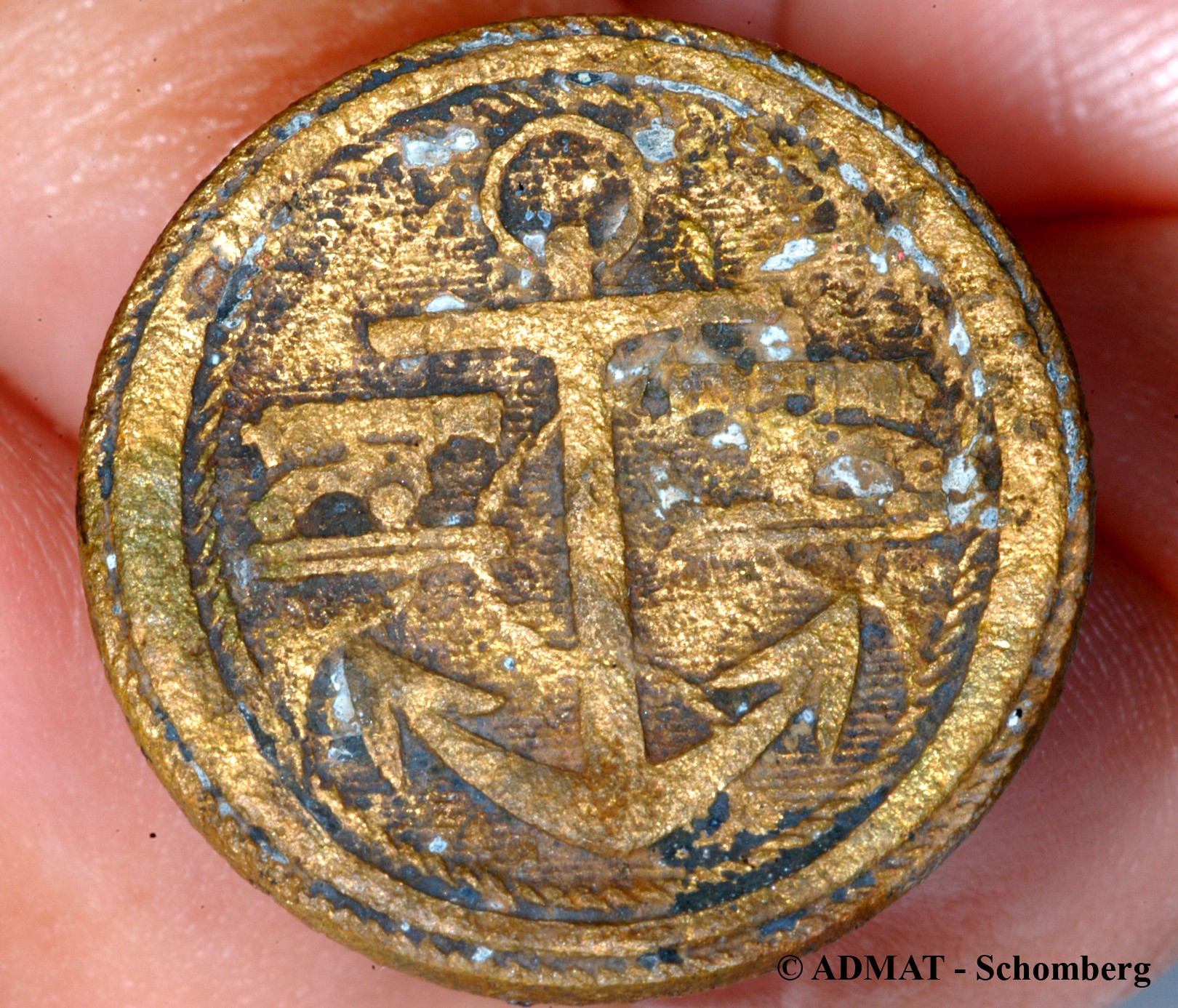 One of two gilt covered copper alloy English gunnery officers buttons found in the hold of the wreck