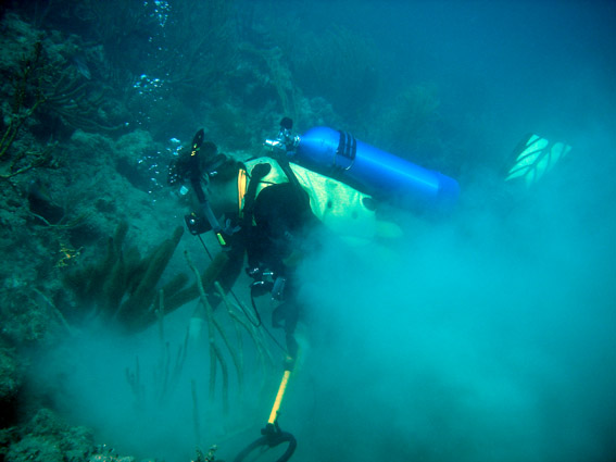 Dr Spooner hand fanning at the base of the reef to see what the Aquapulse metal detector has located