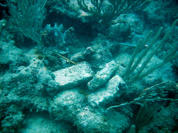 Some of the bricks half way up the reef... follow the bread crumbs of the wrecking process