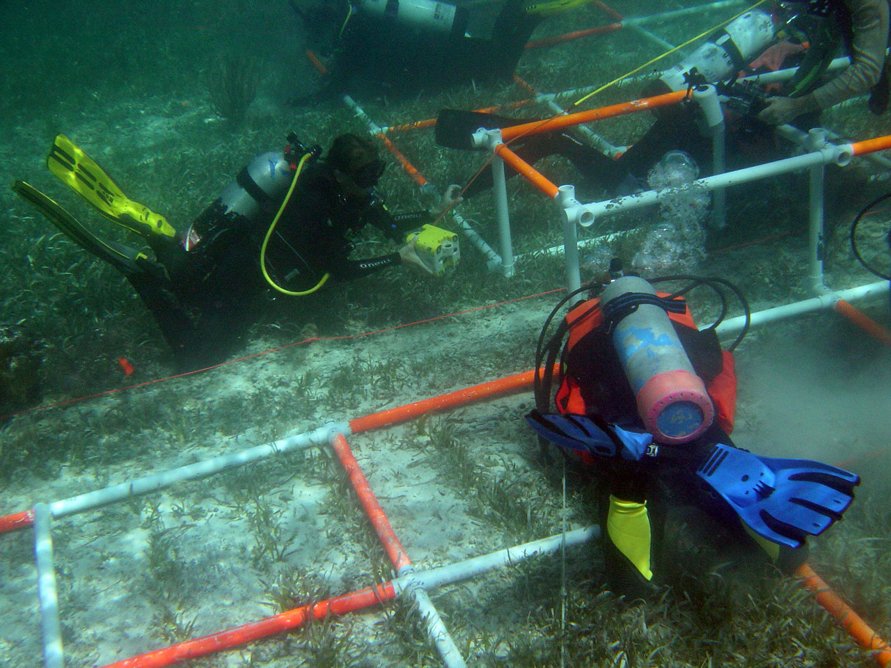 The Team working on  The Button Wreck  in the Florida Keys