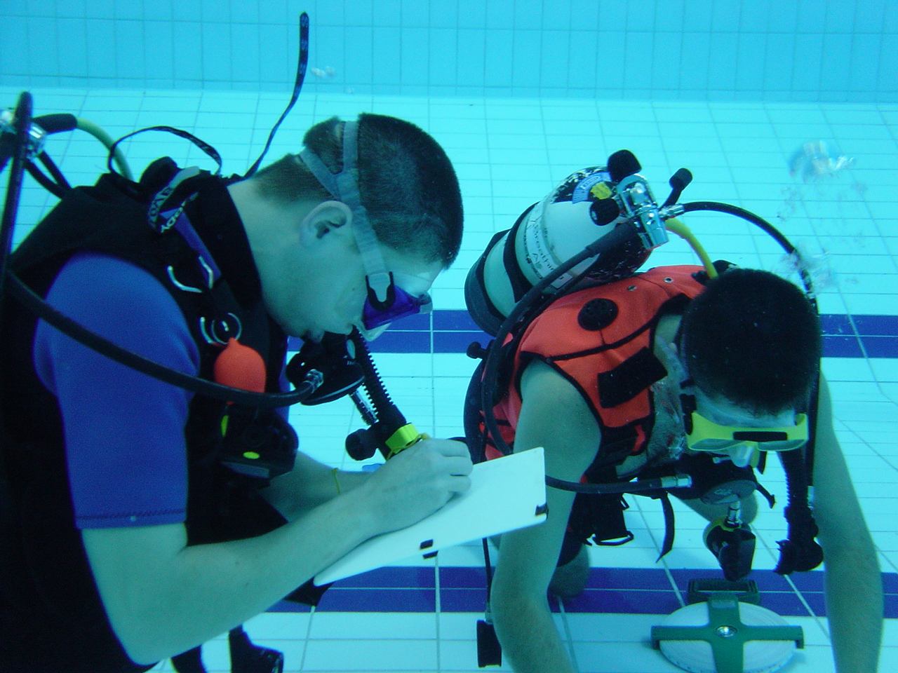 dive show 026.jpg