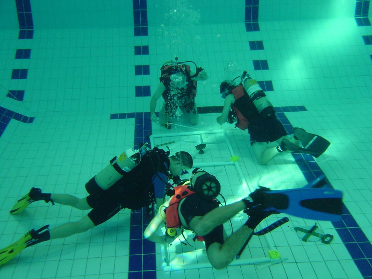 dive show 047.jpg
