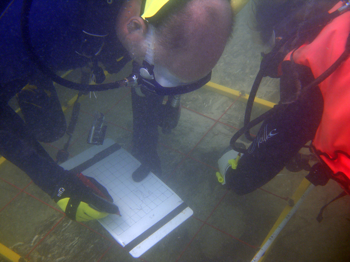 Raimund Krob documenting the rudders dimensions on   The Tile Wreck   in 2014