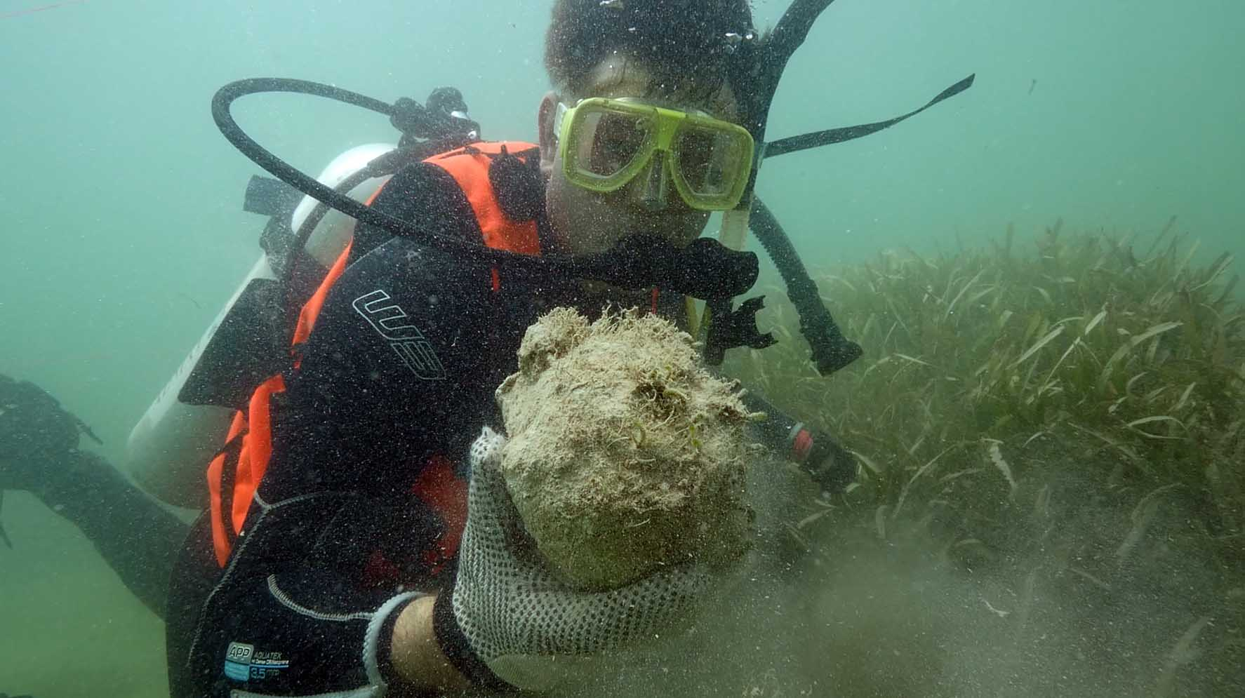 Simon with a cannonball covered with a natural concretion