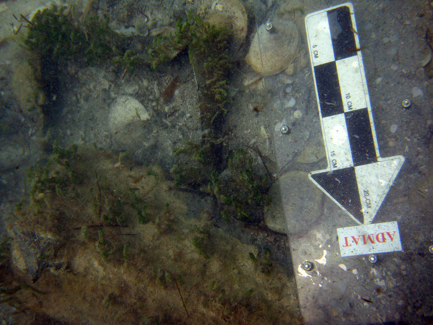 The lead box trapped by one of the iron ballast blocks