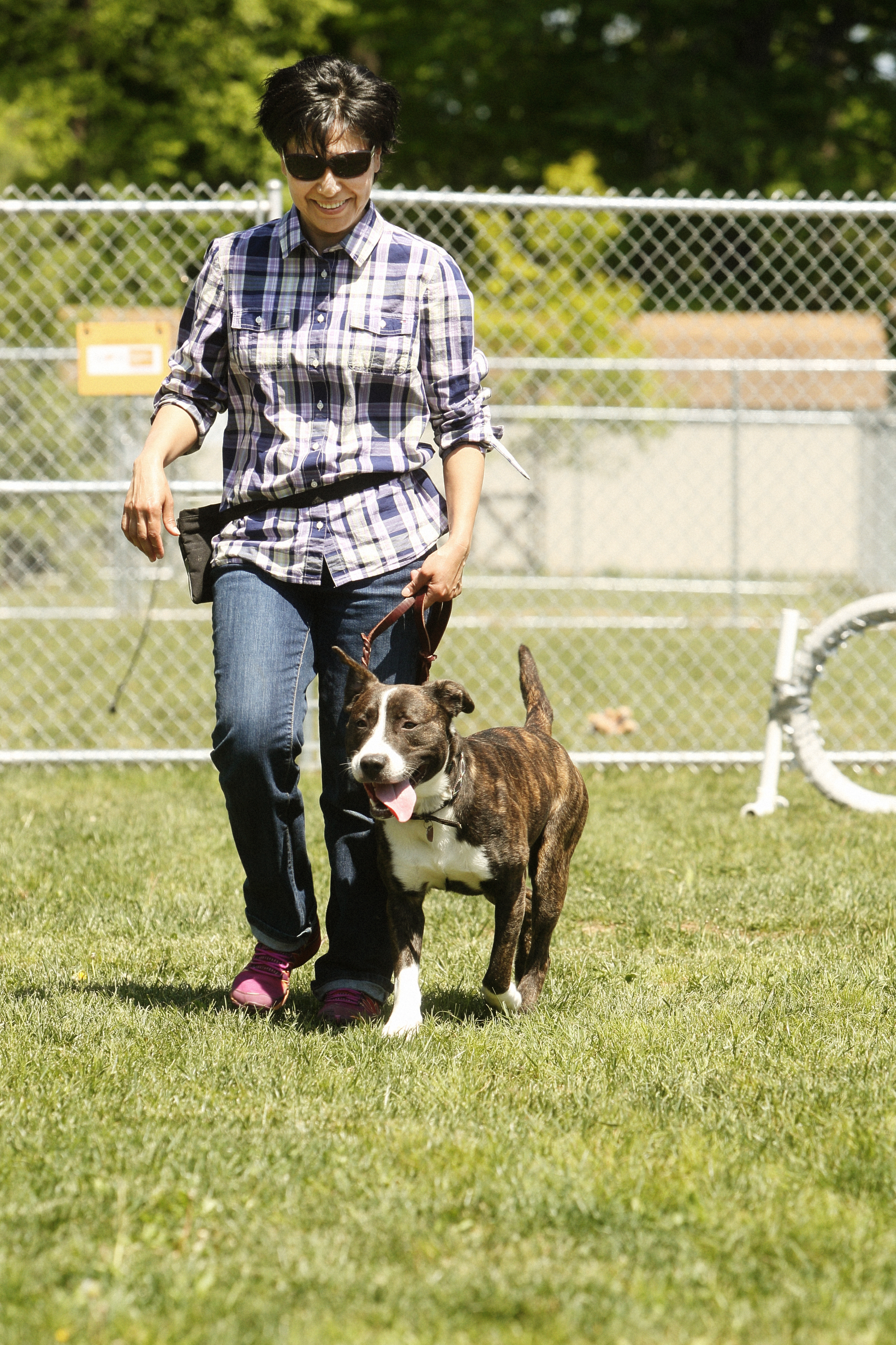 A Week of Working Behavior Cases - Announcing a new Level 2 Behavior Workshop designed for experienced dog trainers or students seeking more hands-on experience with challenging behavior cases.
