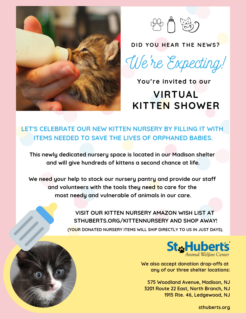 Kitten Nursery Flyer 8.5 x 11 Apr 2019.png
