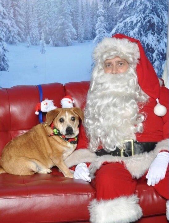 Zephyr and Santa cropped.jpg