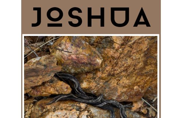 Joshua+for+website.jpg