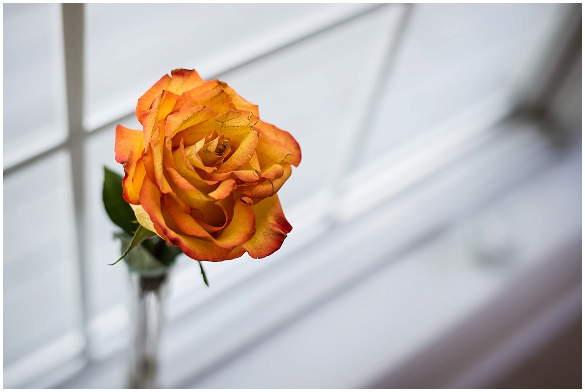 K Solberg Photography Stillwater Backyard Wedding_0005.jpg