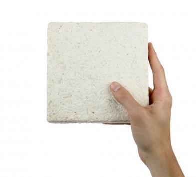 MycoFoam