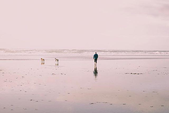 Heceta beach, OR.