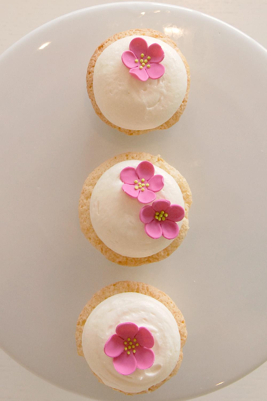 Custom_decorated_cupcakes_003.jpg
