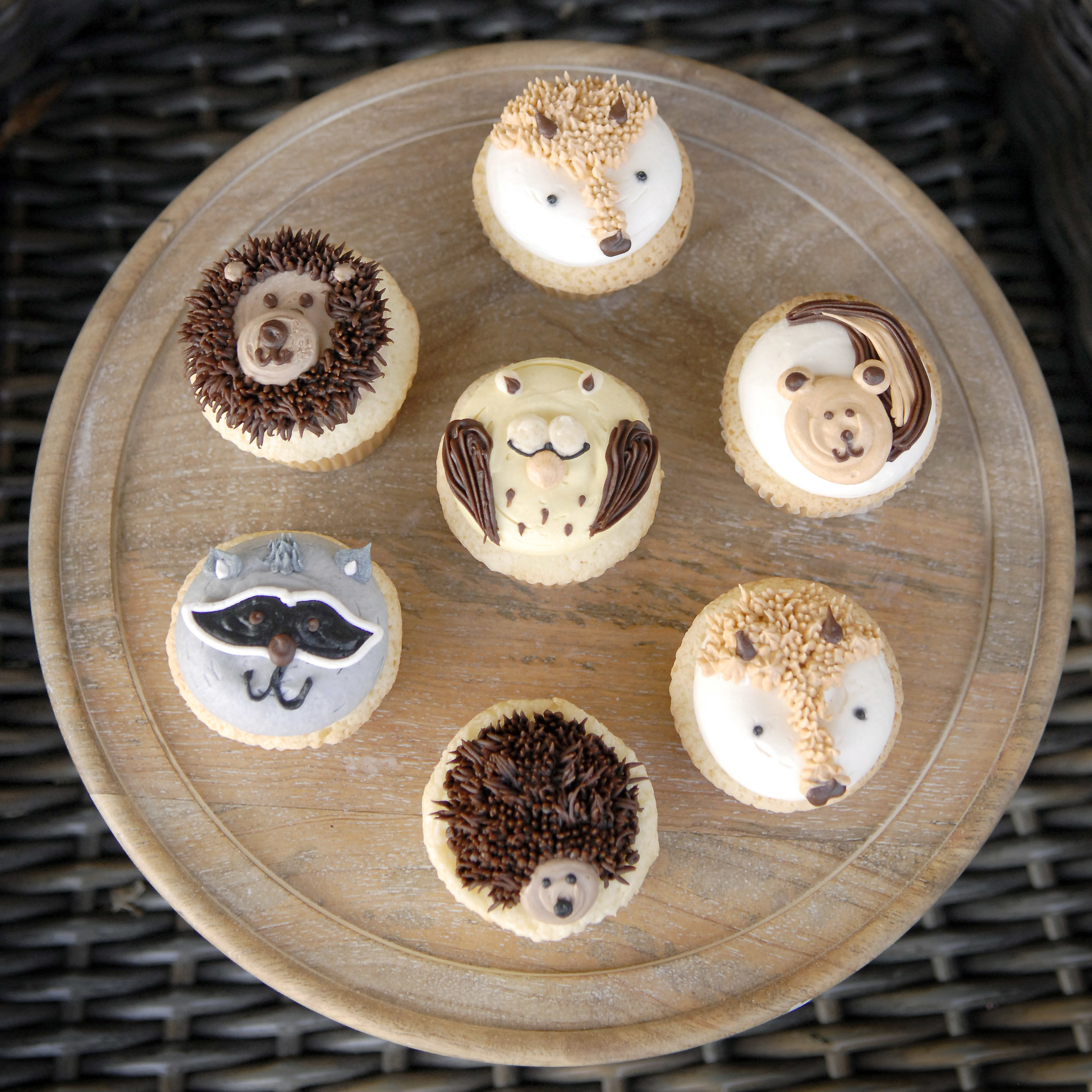 Custom_decorated_cupcakes_012.jpg
