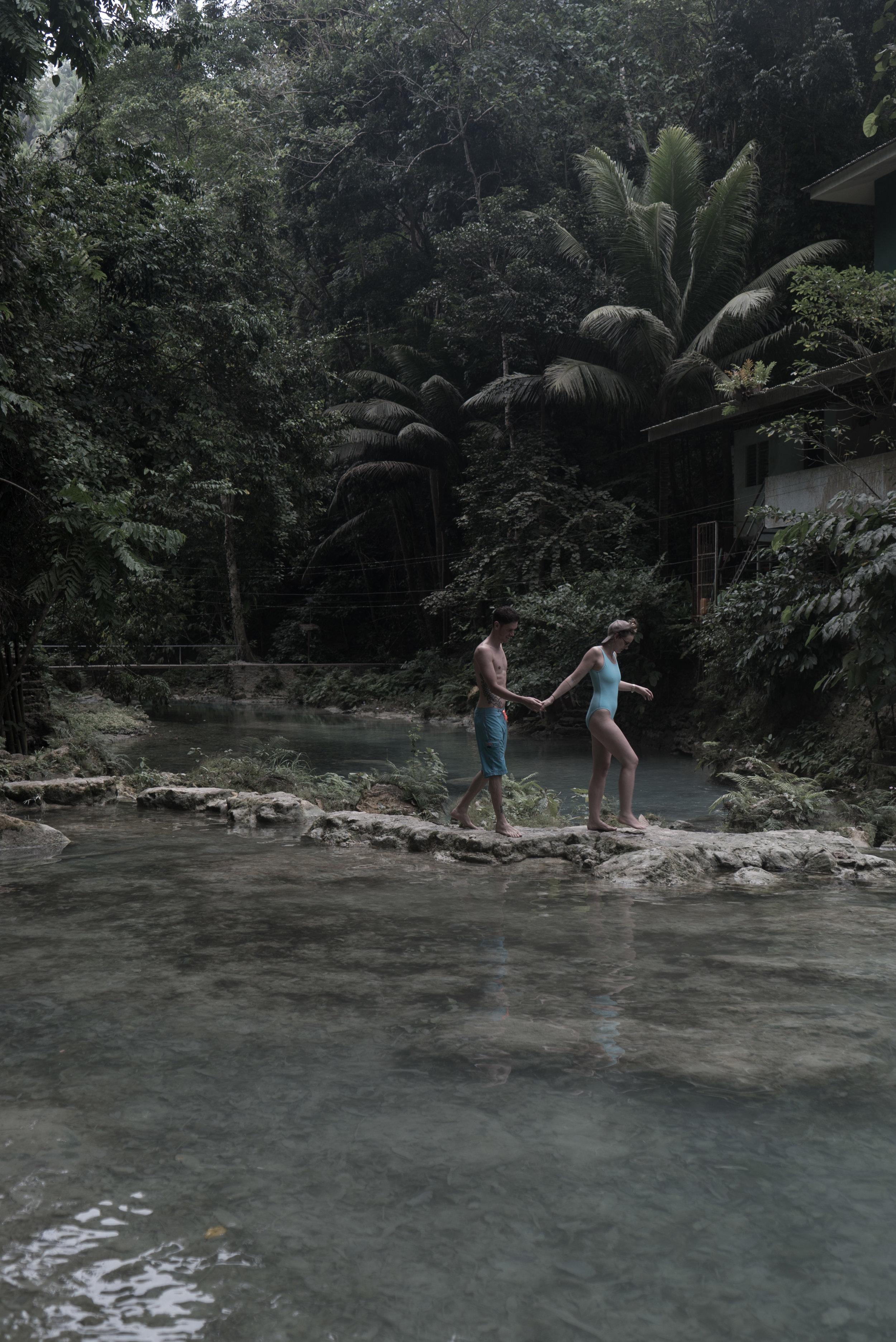 King Jungle 7.JPG