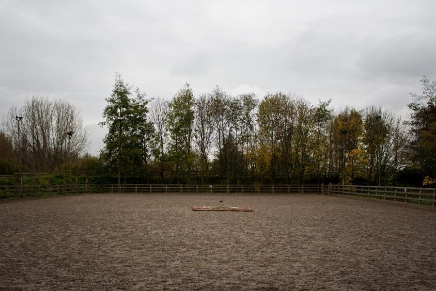 Mudchute Park, Fall 2010