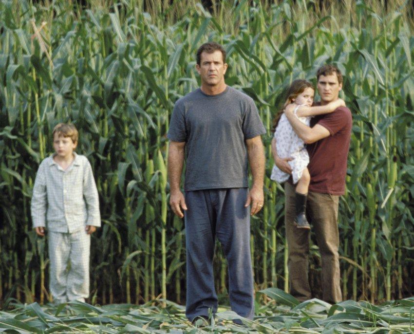 Mel Gibson in corn field