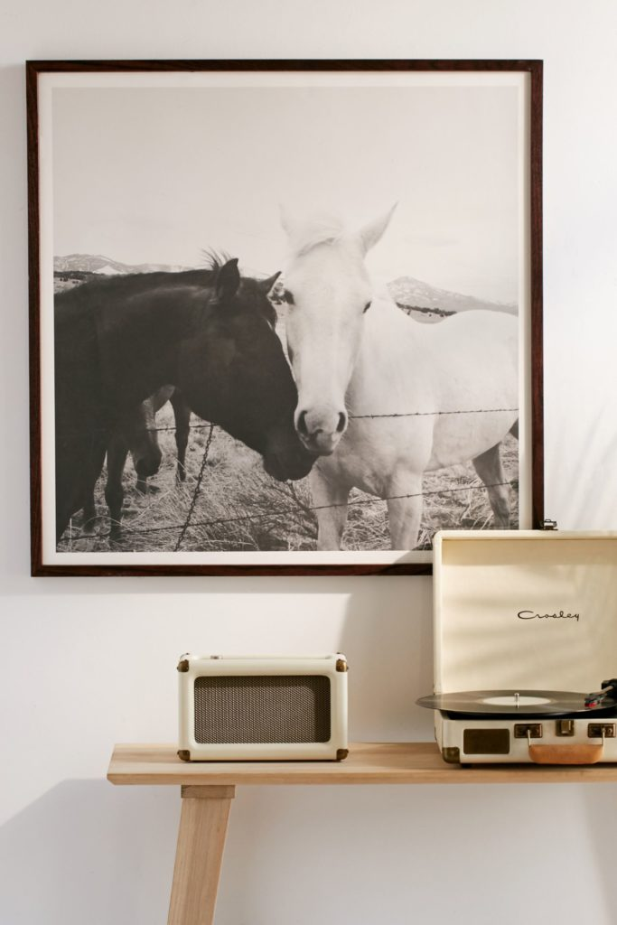 Horse photo by Kevin Russ from Urban Outfitters