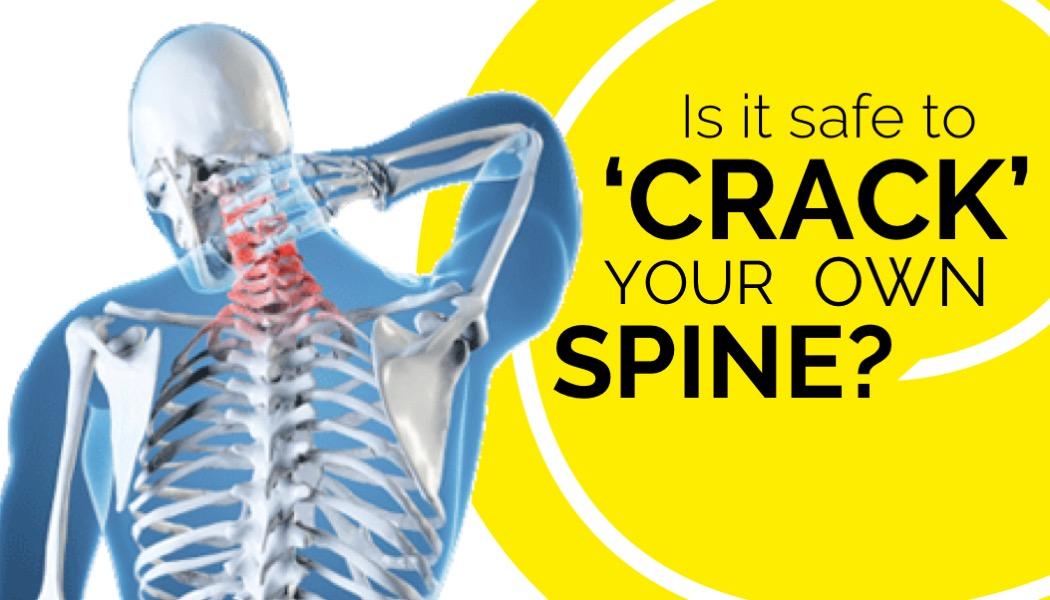 Spine professional crack