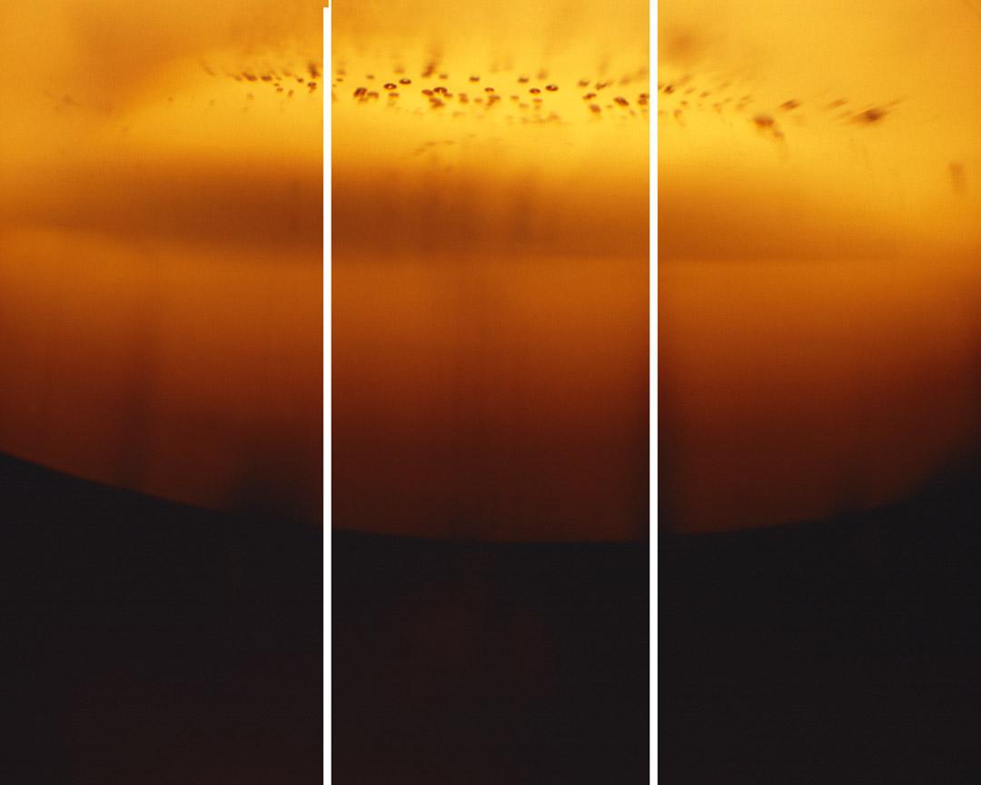 A3 triptych.jpg