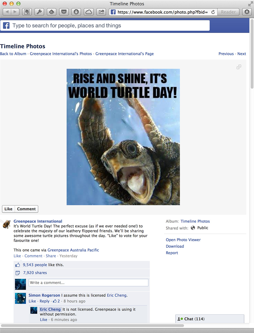 Greenpeace uses my screaming turtle picture without permission