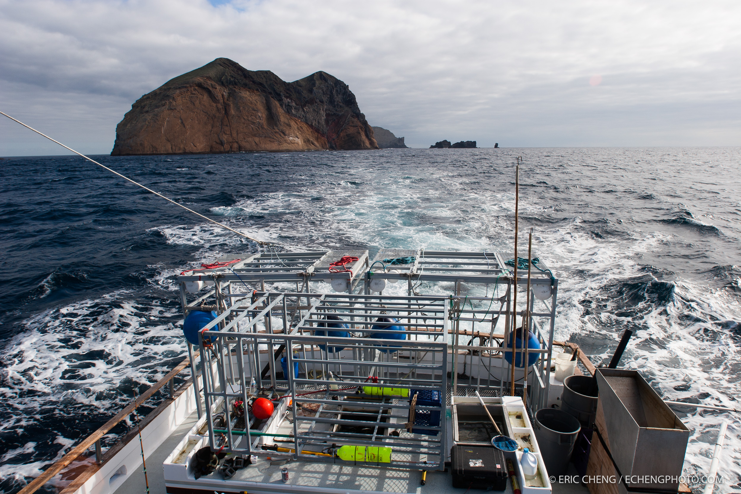 Arrival at Guadalupe Island